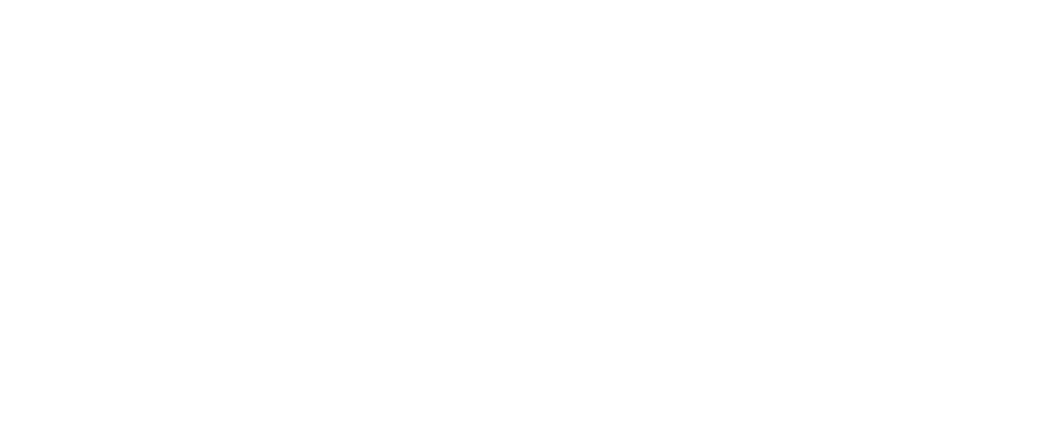 Napis_2019Openminds